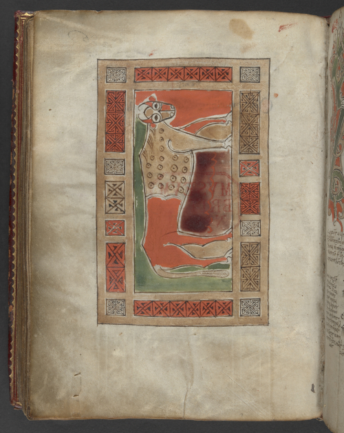 A page from an Irish Gospel-book, showing the ox symbol of the Evangelist St Luke.