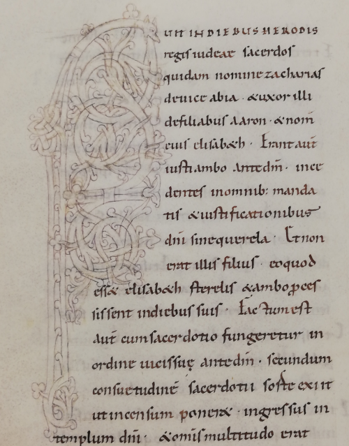 A sketch for a large initial F from a 10th-century Gospel-book and Lectionary.