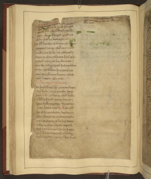 A page from an Old English Herbal, showing recipes added to the manuscript during the 12th century.