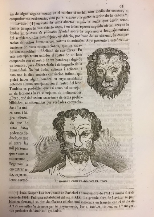 A page from La Frenolojı́a i sus glorias with drawings of a man and a lion