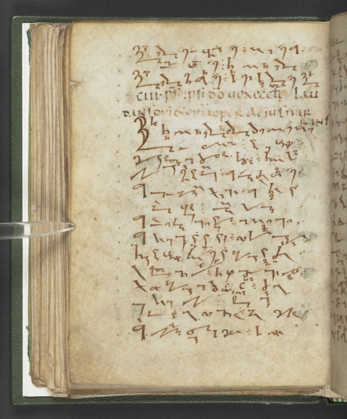 A page from a medieval manuscript filled with Tironian notes