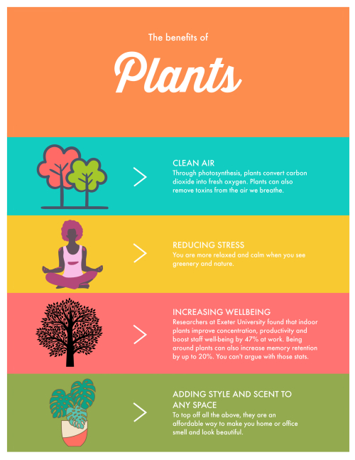 What are the benefits of having plants_