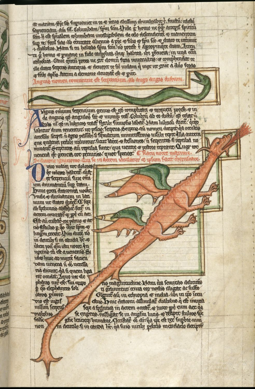 Illustration of a dragon