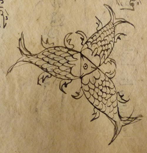 MSS.Jav.77  f.16v-fish