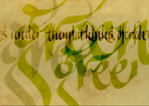 Screenshot from is 'From This Train' by Kathryn Darnell showing handwriting