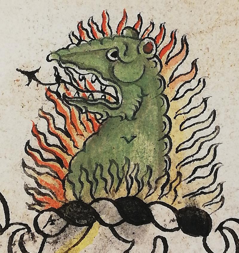 Image 7 - Salamander