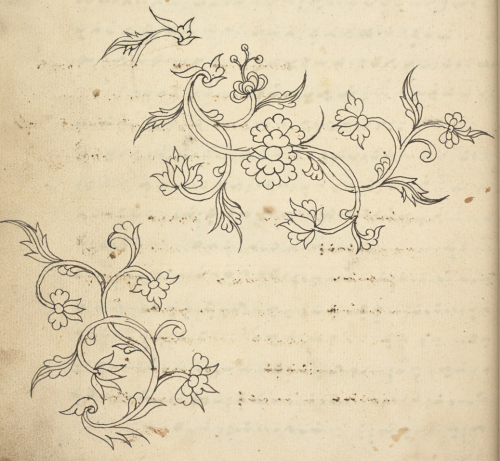 Floral sketches in a volume of Bugis treatises on diseases and medicines Add_ms_12372_f073v