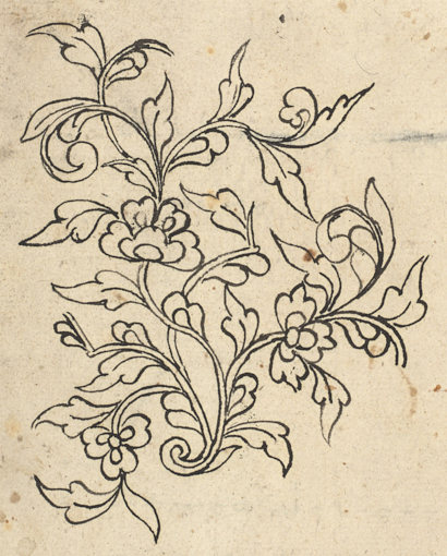 Sketches in a collection of Bugis poems Add_ms_12361_f018r-floral