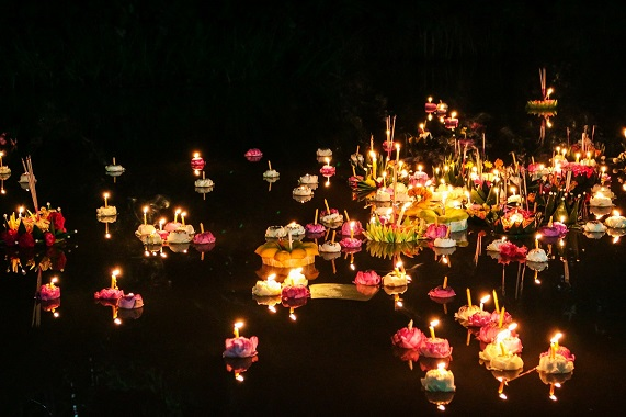 Light Night blog - Reflections on the Water Flower Lanterns at Leeds Dock