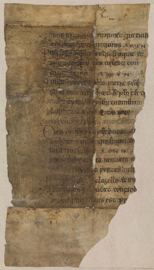 The reverse of a leaf from an Anglo-Saxon benedictional.