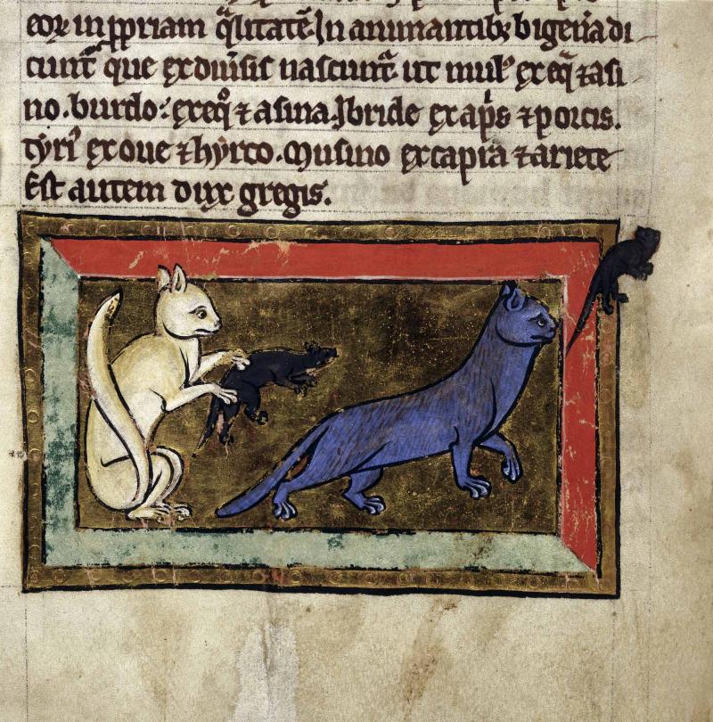 MedievalBestiary4-cats-mice-f36v