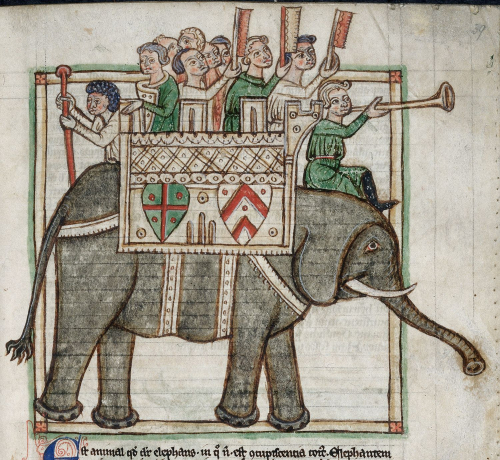 An elephant from a bestiary