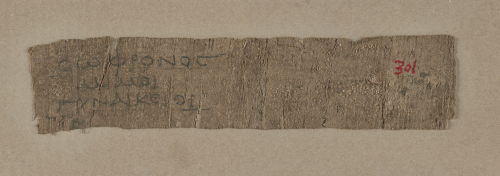A piece of ancient papyrus bearing Greek writing