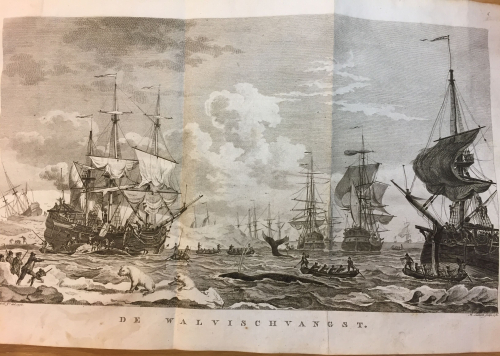 Engraving by Kobell (engraver) and Sallieth (artist) of a whaling scene