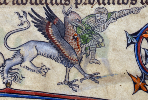 A knight in combat with a griffin