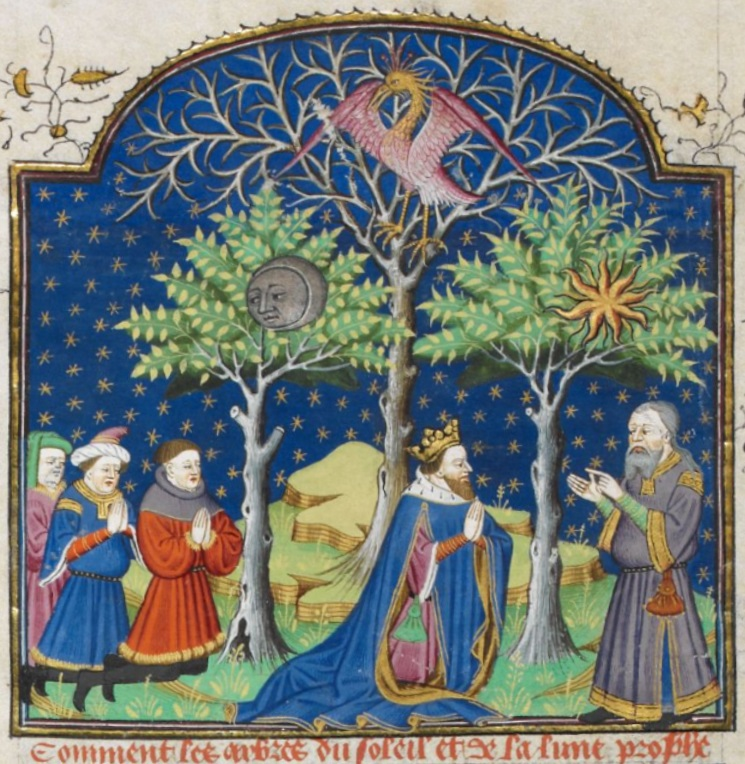 Image 2 - Dry Tree