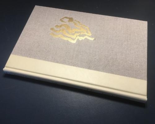 Photograph of hardback cover of Stirrings Still