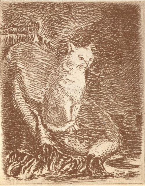 An engraving of the white cat by Voldemārs Krastiņš in Kārlis Skalbe, Pussy's Water Mill