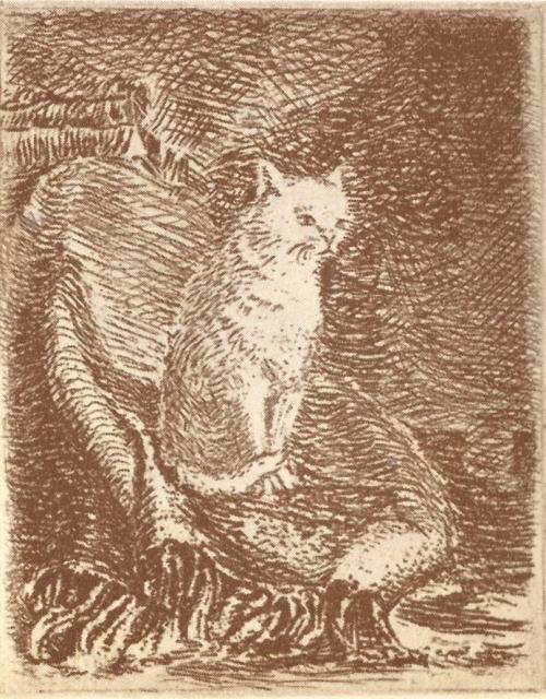 An engraving of the white cat by Voldemārs Krastiņš in Kārlis Skalbe, Pussy's Water Mill