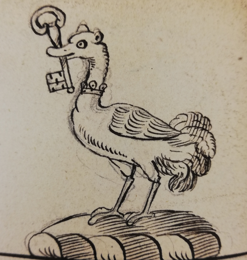 Image 2 - Ostrich