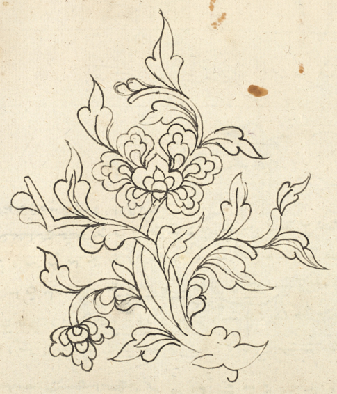 Floral sketches in a collection of Bugis poems Add_ms_12361_f017r-floral