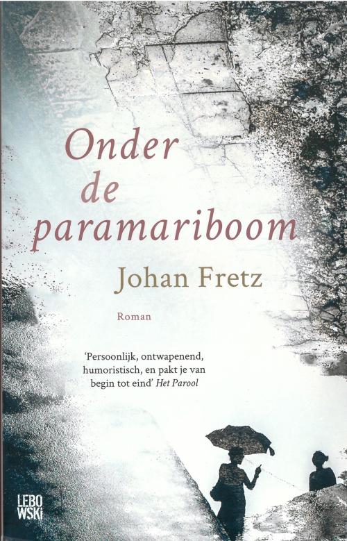 Cover of 'Onder de paramariboom' with an image of two women in sihouette and an aerial view of a landscape