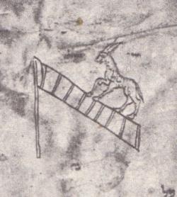 Donkey climbing a ladder