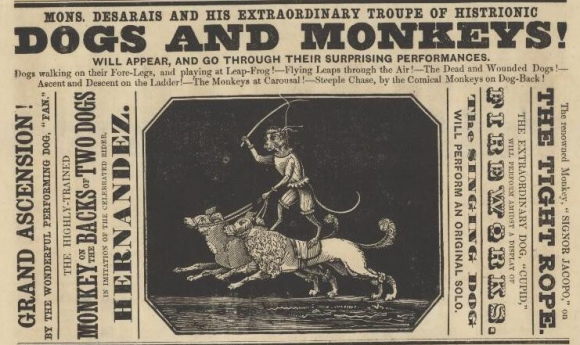 Desarais' Extraordinary Troupe of Histrionic Dogs And Monkeys from a playbill on 29 April 1851.