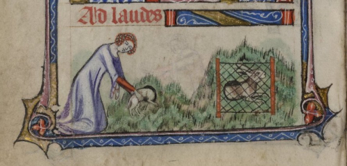 A woman catching rabbits in the Taymouth Hours