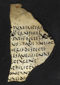 Fragment of a parchment manuscript, containing a fragment from a historical work, written in Roman literary cursive