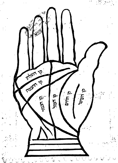 A printed illustration of a hand and palm lines