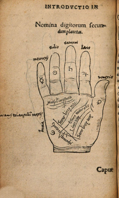 A printed illustration of a hand and its lines explained in Latin
