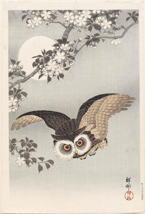 Scops Owl Cherry Blossoms and Moon by Ohara Koson