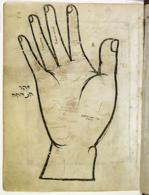 A large hand with palm lines illustrated