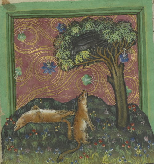 he brown Fox plays dead under the tree in which the Raven sits.