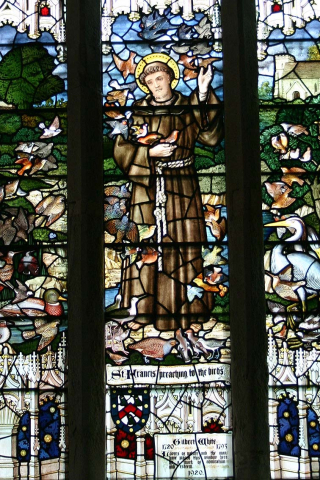 A stained glass window showing a man in a brown habit with a halo, in a country landscape surrounded by birds