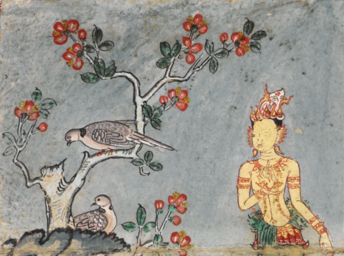 A pair of Spotted Doves (Spilopelia chinensis, นกเขาใหญ่) in an illustration from the Temiya Jātaka, here seen next to Prince Temiya. Central Thailand, 18th century. British Library, Or 14068 f.1
