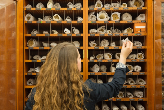 Here a conservator is placing a scroll into a pigeon hole. Some of the cabinets have individual pigeon holes for each scroll with the shelfmark noted.