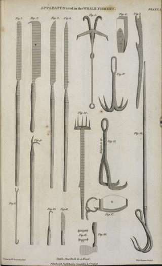 Whaling Apparatus