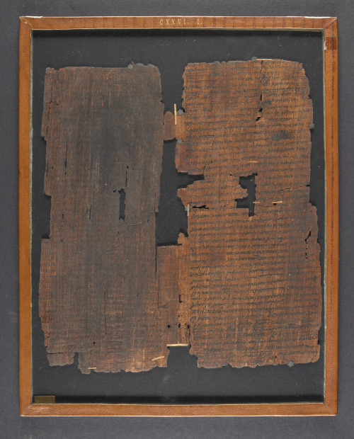 A framed papyrus, featuring the text of Book II of Homer's Iliad.
