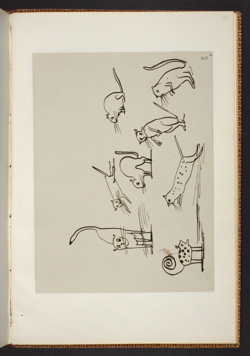 Edward Lear's Nonsense Manuscript (February 1885) Copyright  Estate of Edward Lear, showing sketched animals in various poses.