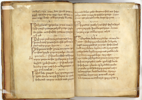 An opening from Bald's Leechbook, showing medical recipes in Old English.