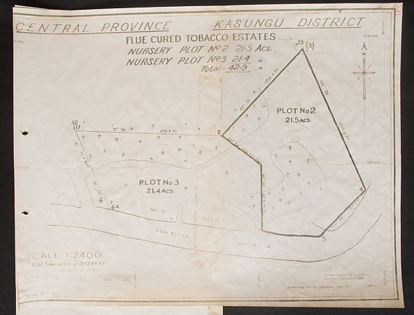 A plan showing plots on a tobacco estate