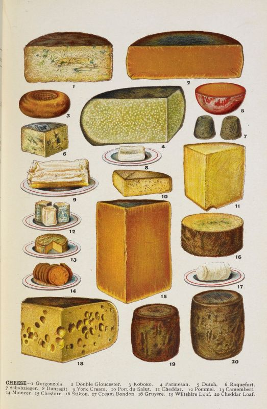 image from Mrs Beeton's Family Cookey and Housekeeping book, showing a selection of cheeses