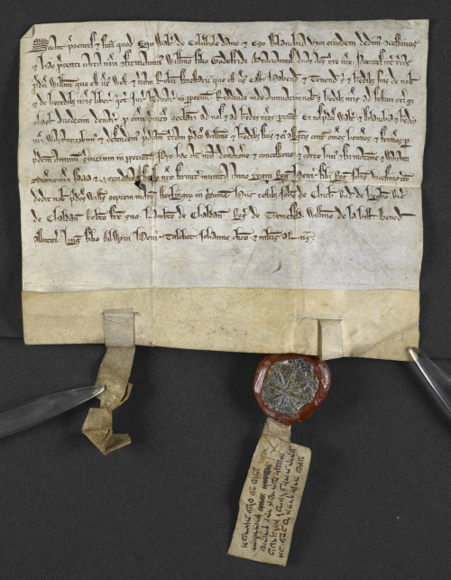 Latin deed with Hebrew quitclaim (attached to seal), by Jacob ben Aaron releasing a piece of land to William le Briel. England, 1239 CE (Harley Ch 77 D 40, f. 1r)