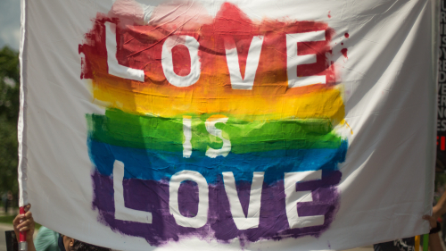 A white banner with the LGBTQ+ flag colours painted on with the text - love is love