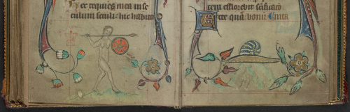 An opening from a Book of Hours, featuring a marginal illustration of a naked woman fighting a snail.