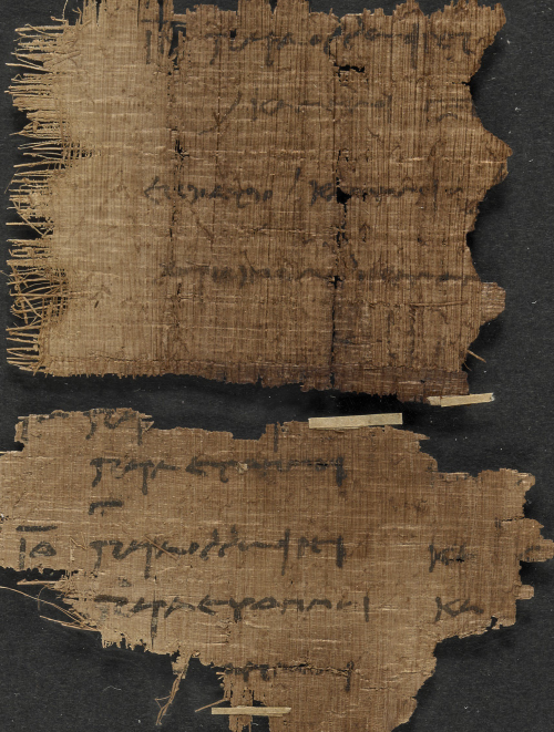 Fragments from the account-book of a camel agent