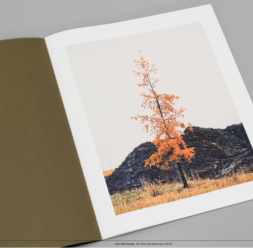 Alan's book on an open page showing a photograph of a tree