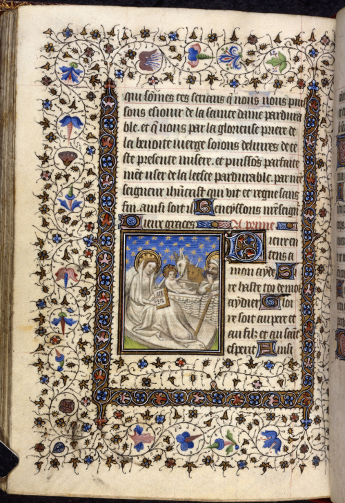 Nativity with Ox and Ass in a Book of Hours